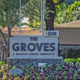 the groves el camino real