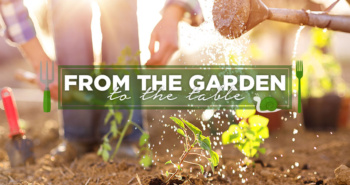 From the Garden to the Table | blog.phmc.com