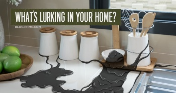 What's Lurking in your Home? | blog.phmc.com